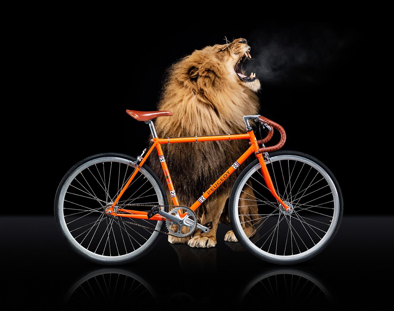 E-Legend Cycle Peugeot
